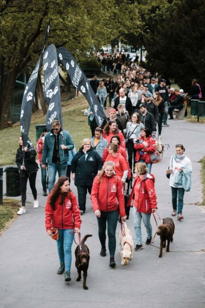 A sétálók csoportja